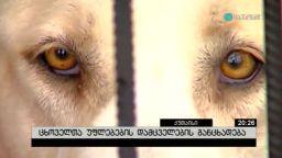 ცხოველთა უფლებების დამცველების განცხადება